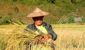 Thailand-woman