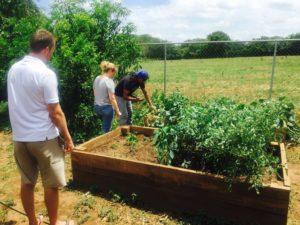 Nicaragua garden project